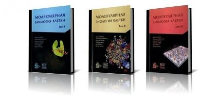 Книга Перед вами последнее издание Альбертса — «Молекулярная биология клетки» 2013 года. Является лучшим в мире учебником по теме. Пр