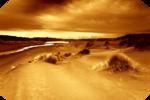 scenery_106910_TbS - копия.png