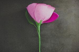Гигантская роза