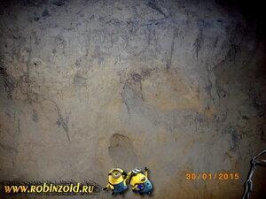мыши в подполье