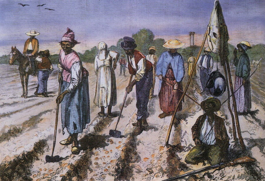 plantation society in the caribbean today Caribbean crucible : history, culture and centuries-enduring plantation complex and the rapid that today imprints all aspects of caribbean society.