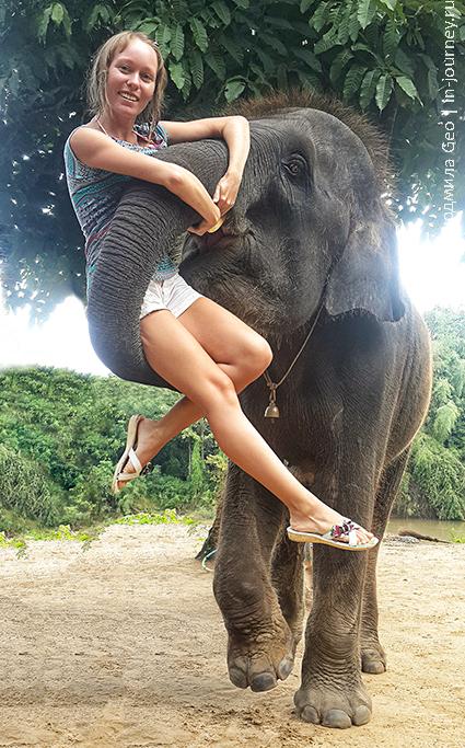 фото со слоном в таиланде