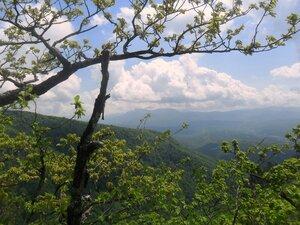 В горах ... SAM_6978.JPG
