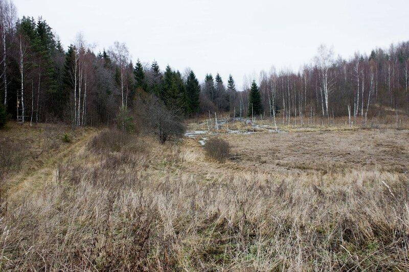 дорога из урочища Обитель к деревне Петровка
