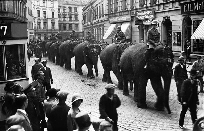 409706 Elefanten auf den StraЯen von Kцnigsberg.jpg