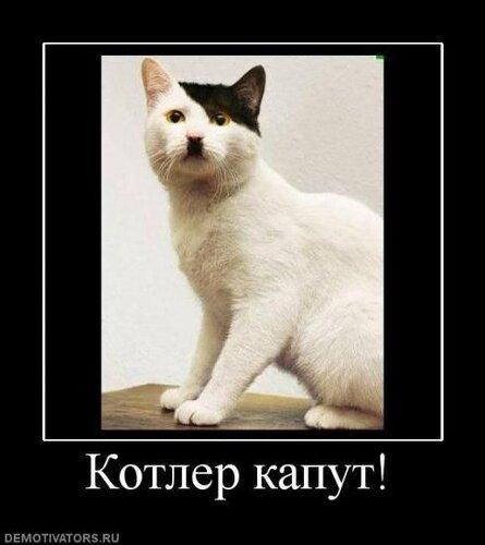 http://img-fotki.yandex.ru/get/26/darina-skirda.7/0_159e0_af0fee6f_L.jpg