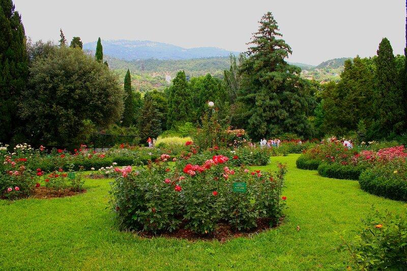 Никитский ботанический сад, Ялта.  Фотогалерея.