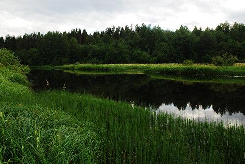 Река Шумиха