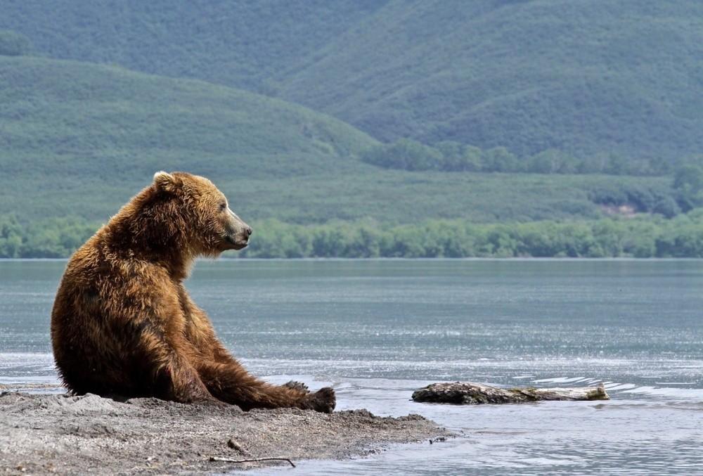 14. Мыслитель, Россия. (© Alla Ganster)