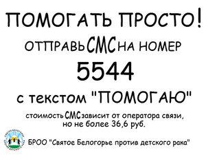 PomogatProsto.jpg