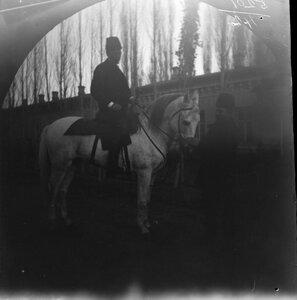 28 ноября. Ташкент. Зевальд, друг Уильяма Захтлебена на белом коне перед гостиницей-рестораном Ревийон