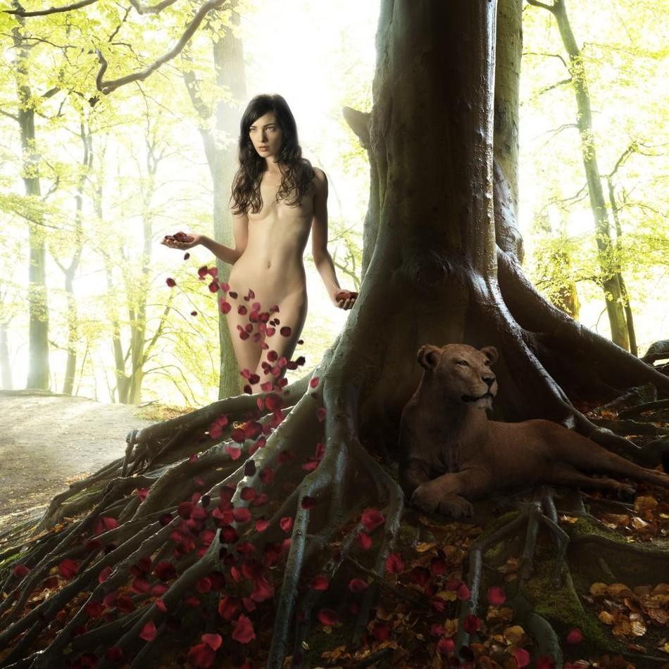 18. Таинственный лес