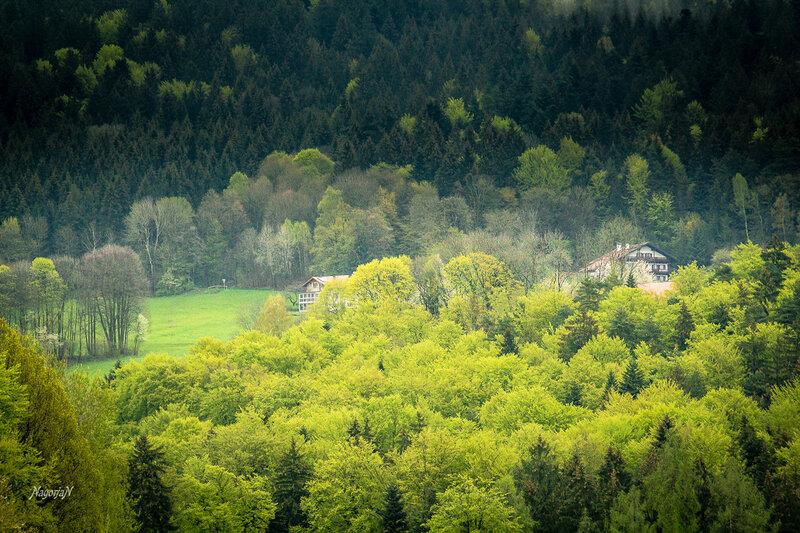 Bayerischer Wald,  Landkreis Deggendorf.
