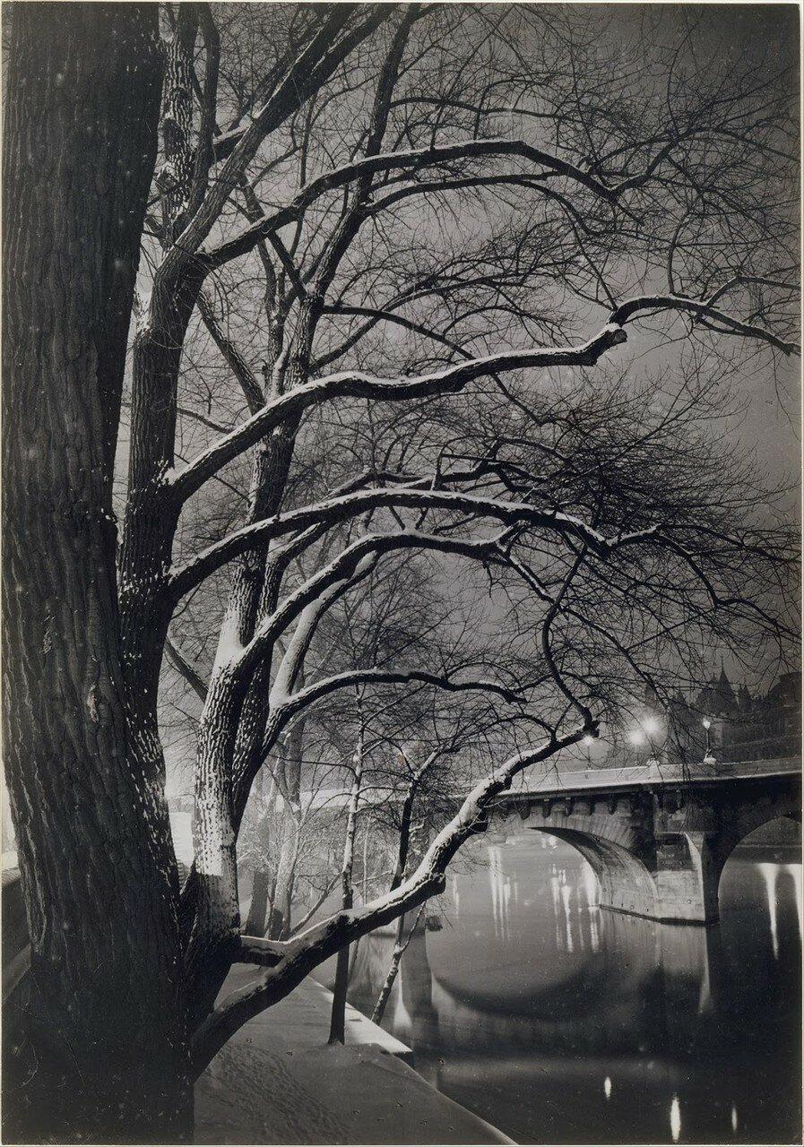 1945. Деревья возле Пон-Неф