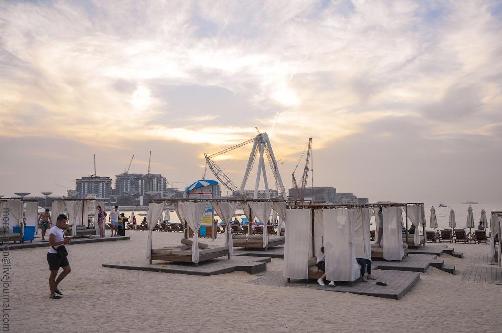 Dubai-Critic-(19).jpg