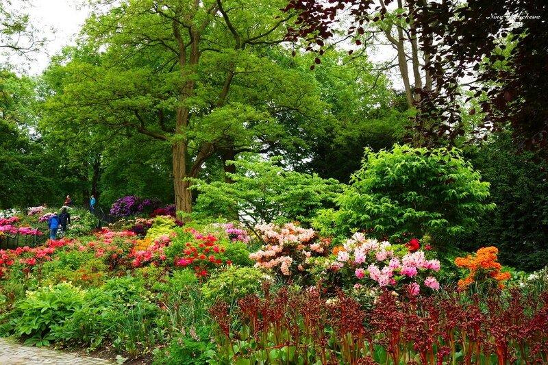 Как прекрасен парк летом!