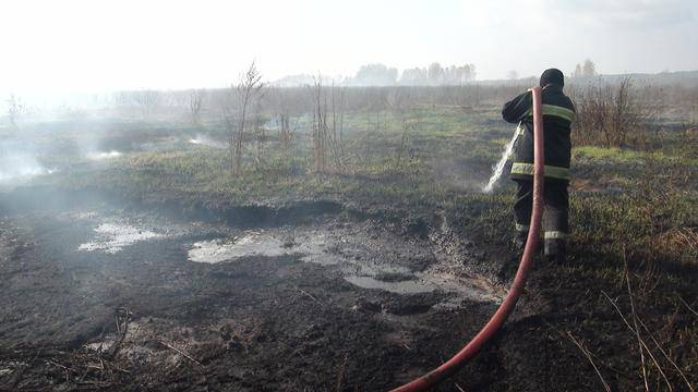 1,5 га торфяников сгорели на Житомирщине. ФОТО