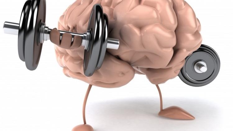 Мозг человека активно развивается до30 лет— Ученые