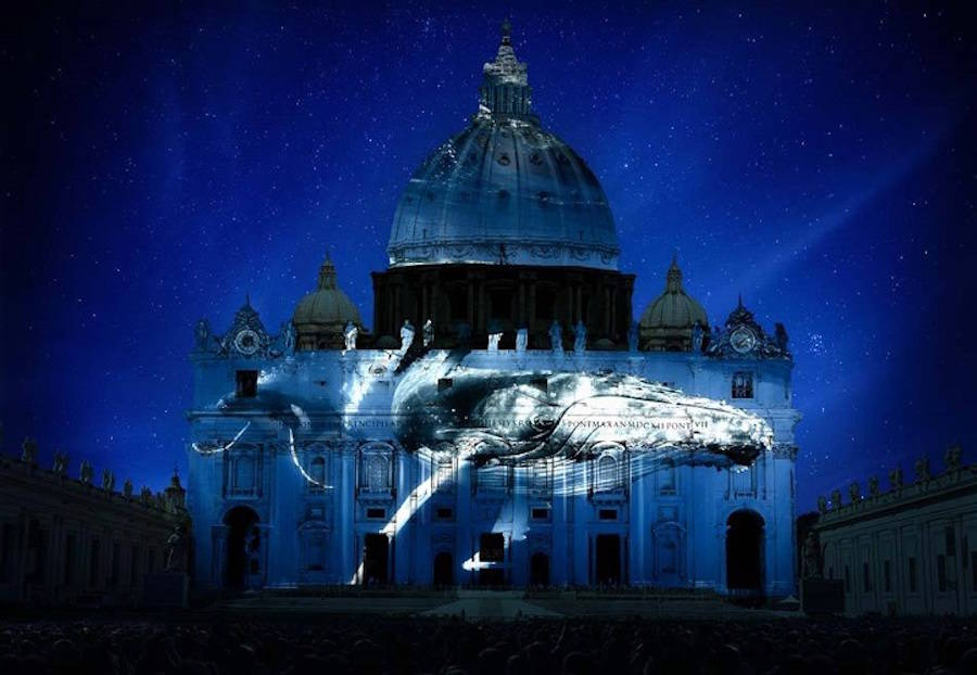 Endangered Species Projected on Vatican (8 pics)