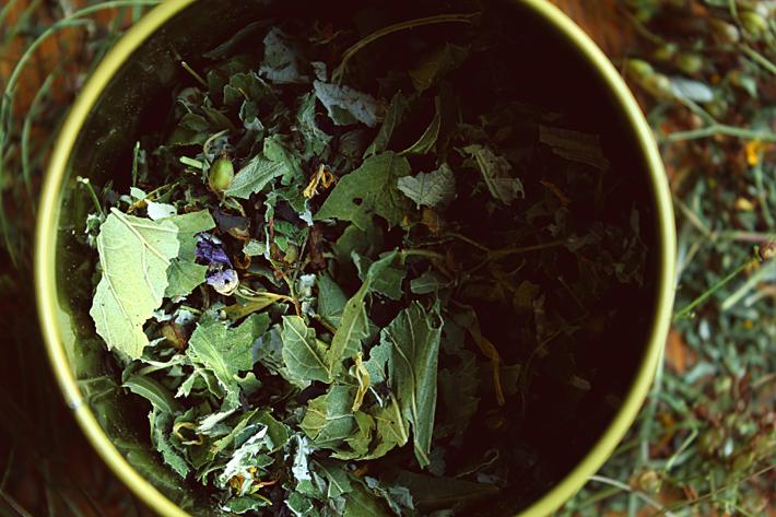 Осенний чай| Slow Life Blog