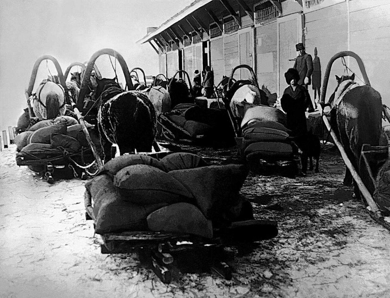 1919. Челябинский уезд. Станция Макушино. Продразверстка