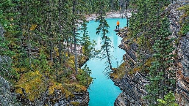 Атабаска, Национальный парк Джаспер, Альберта, Канада