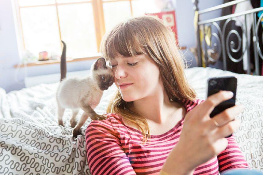 Юзеры социальных сетей публикуют котов— Спецоперация вБрюсселе