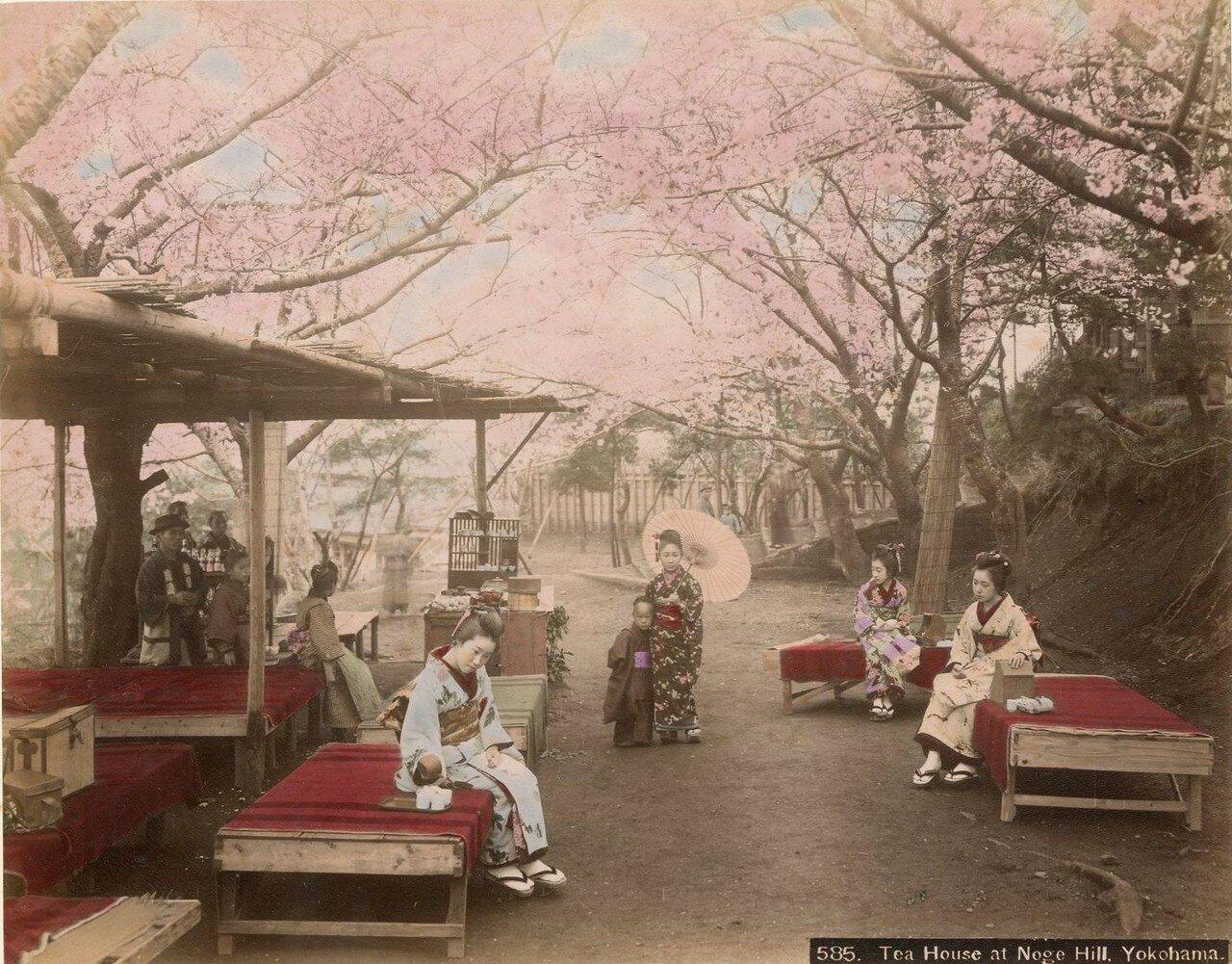 Иокогама. Ноге хилл. Чайный домик