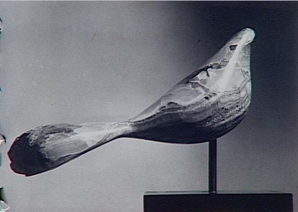 1971. Скульптура «Феникс»