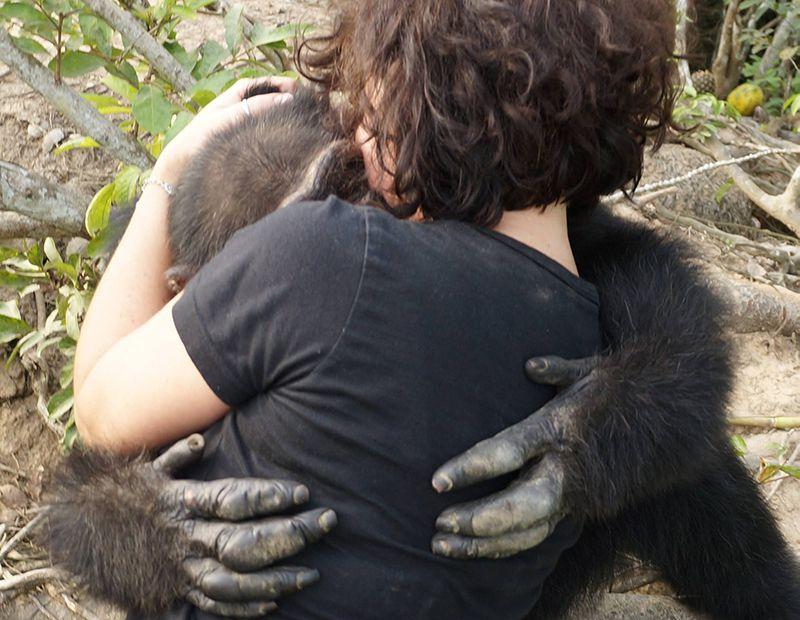 После многих лет одиночества обезьяна встретилась с людьми