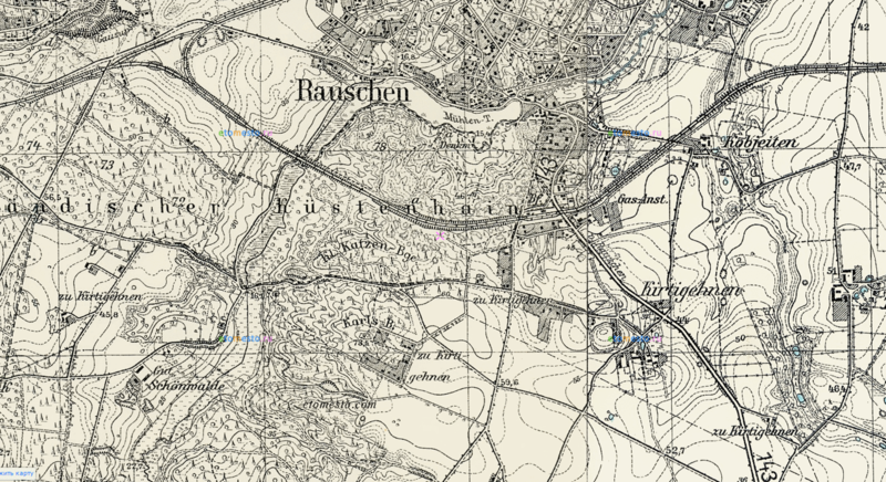 Карта Раушена (район кладбища), 1937 год