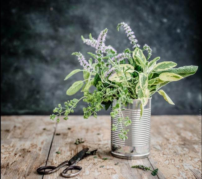 Такие свежие травы сгрубой текстурой, как тимьян, розмарин, шалфей имайоран, следует добавлять вн