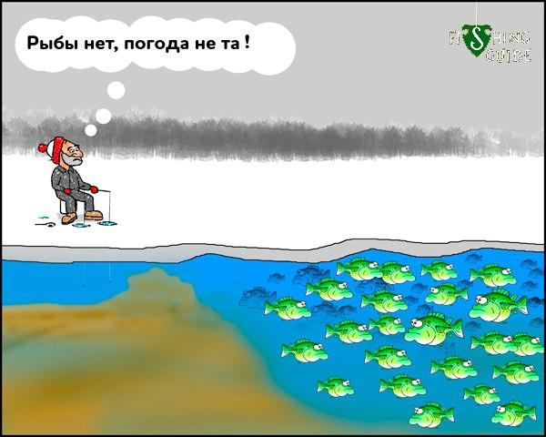 Тут рыбы нет