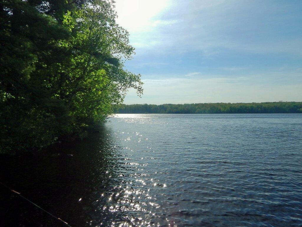 Летом у реки.