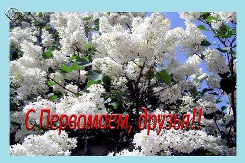 С Первомаем, друзья!!