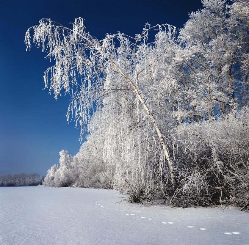 Фото: Дмитрий Купрацевич