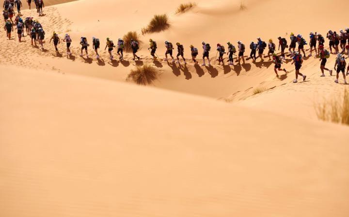 Сопровождение марафона: 130 волонтёров по маршруту гонки, 450 работников вспомогательного персонала,