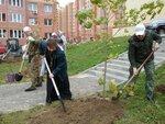 17 сентября 2016 в Егорьевске прошла экологическая акция Наш лес. Посади своё дерево Посадки были проведены в городе и в районе д.Селиваниха