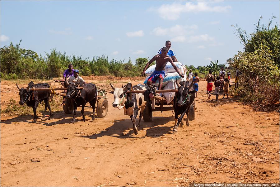 Адские дороги Мадагаскара