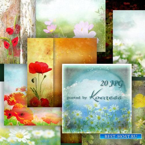 Набор цветочных растровых фонов с луговыми цветами