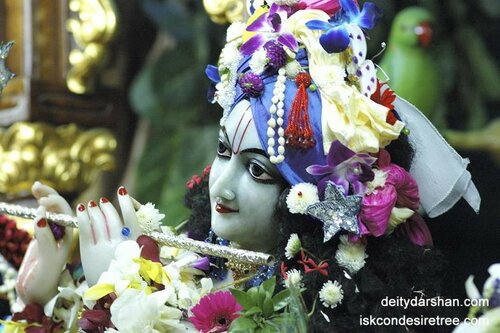 020 Sri Sri Radha Gopinath