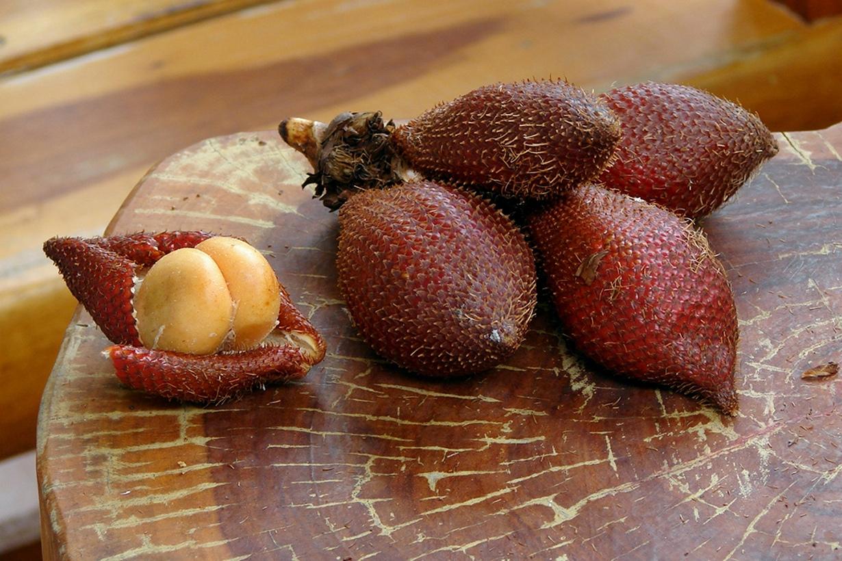 Салак. Фрукт по вкусу схож одновременно с ананасом и бананом, имеет лёгкий ореховый привкус. (Ta