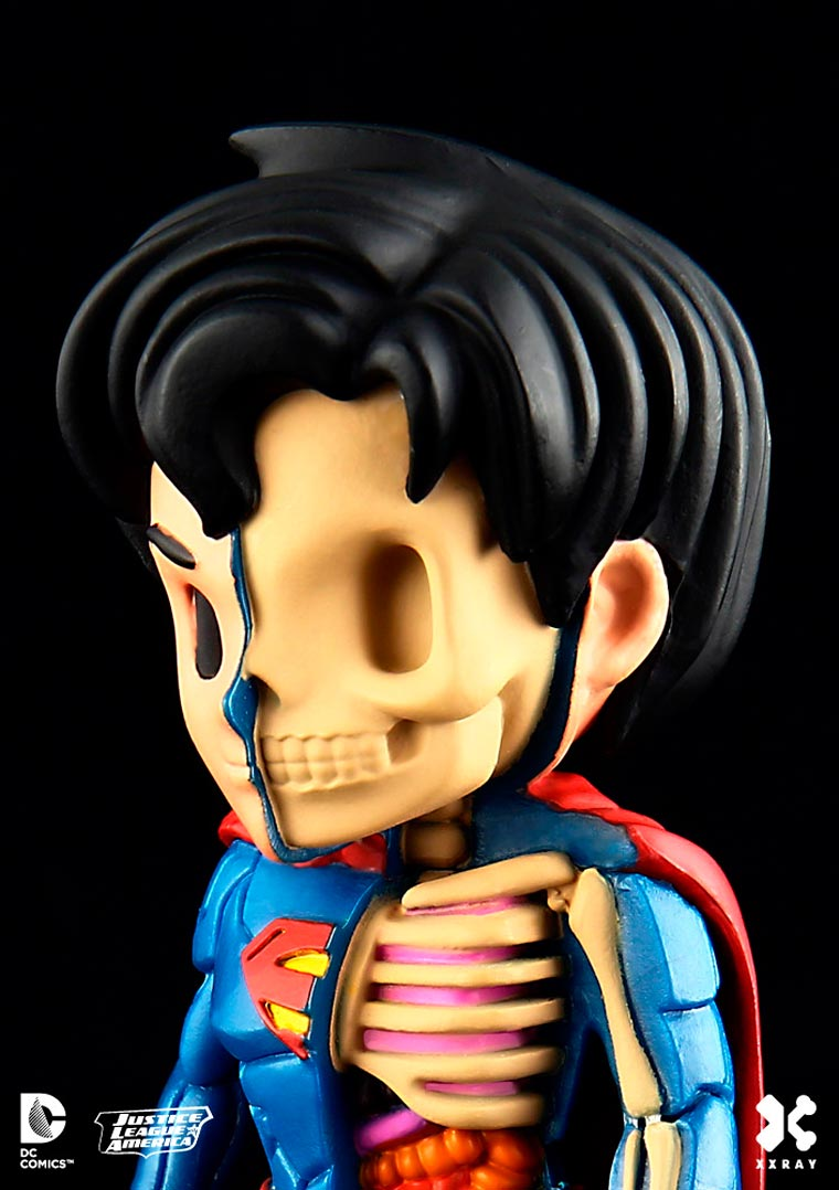 Heroes Anatomy - When Jason Freeny dissects cult superheroes