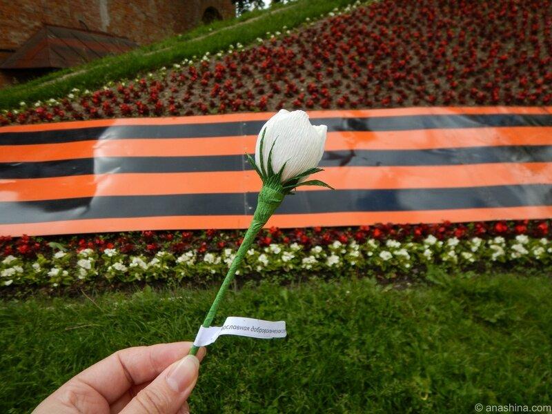 Цветок, Смоленск