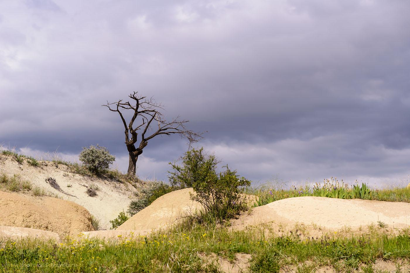 Фото 35. «Анчар» в полях по дороге к Долине Любви. Отзывы туристов об экскурсиях в Каппадокии. 1/500, -0.67, 8.0, 100, 70.