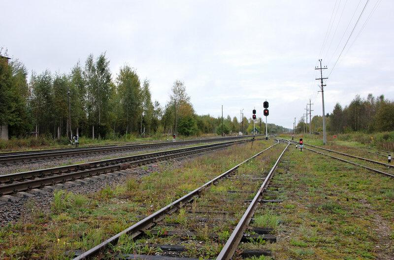 Станция Земцы. Вид на Ржев