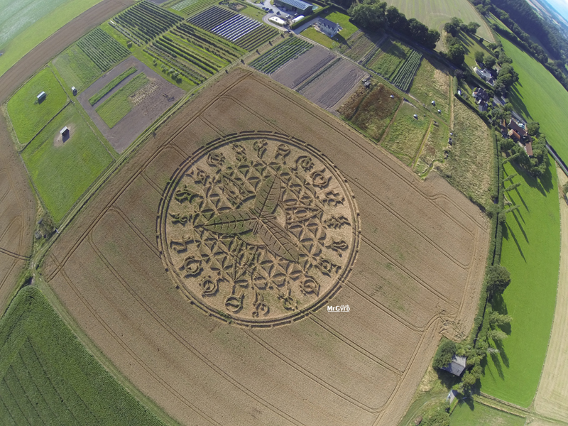 This crop circle has been reported at Ansty, near Salisbury, Wiltshire, UK. Reported on the 12th of August, UK.