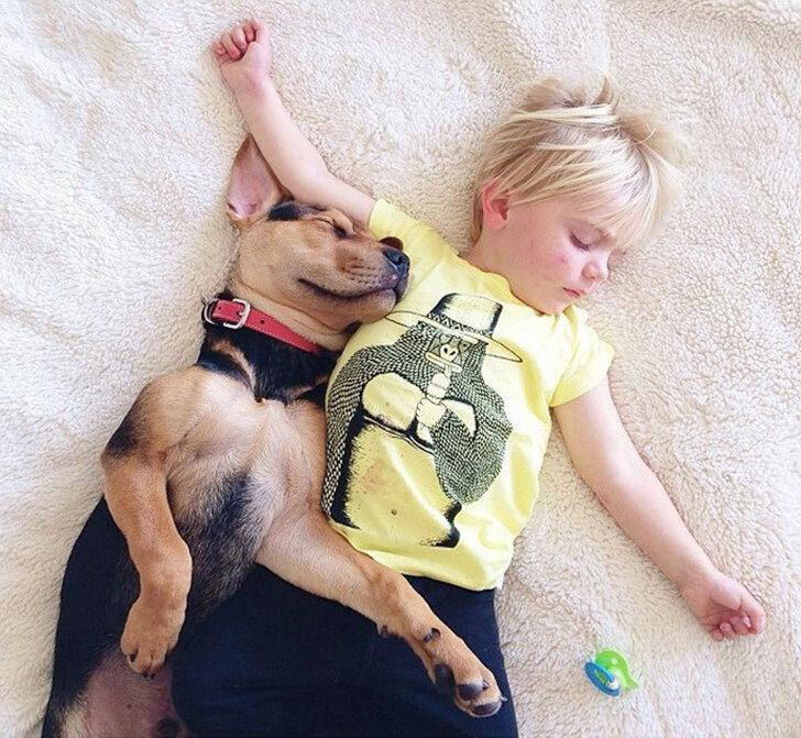Самое милое спящее трио