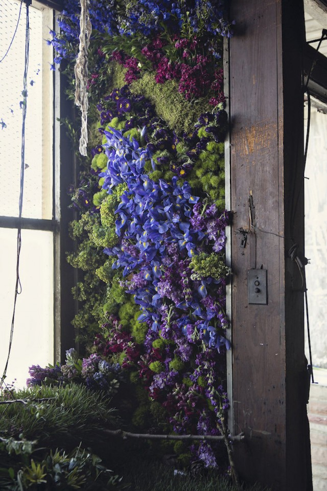 Abandoned Detroit House Filled by Flowers