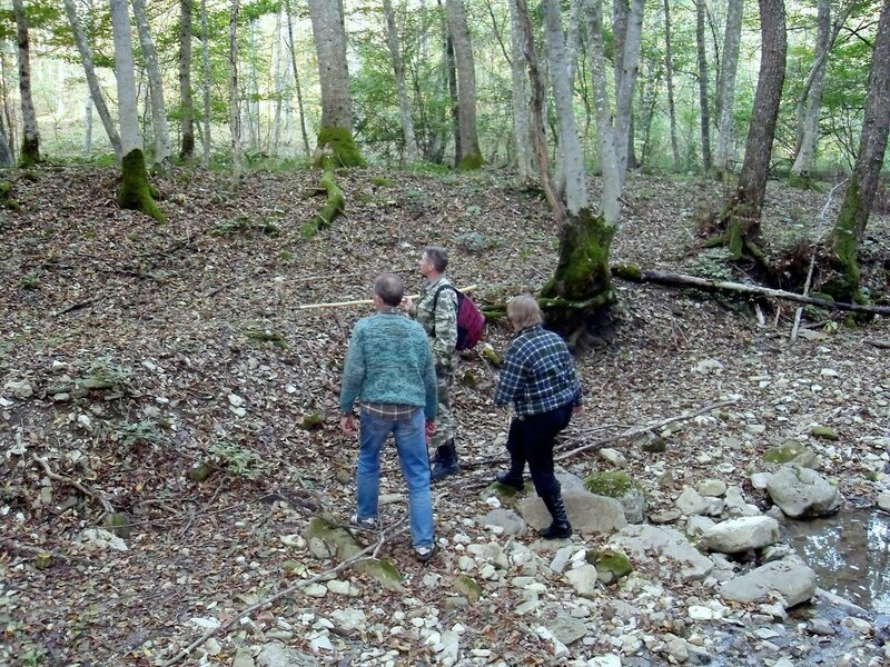 На тропах лесных ... SDC15501.JPG